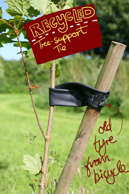 Bike Tyre Tree tie