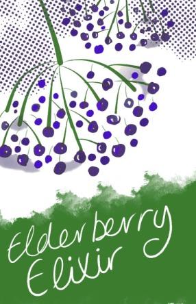 elderberry-elixir