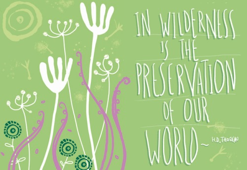In Wildermess is the preservation of our world