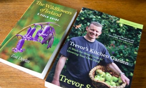 ZoeDevlin_TrevorSargent_books